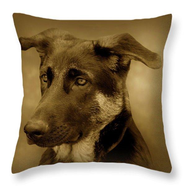 German Shepherd Pup Throw Pillow by Sandy Keeton