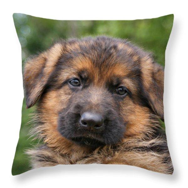German Shepherd Puppy II Throw Pillow by Sandy Keeton