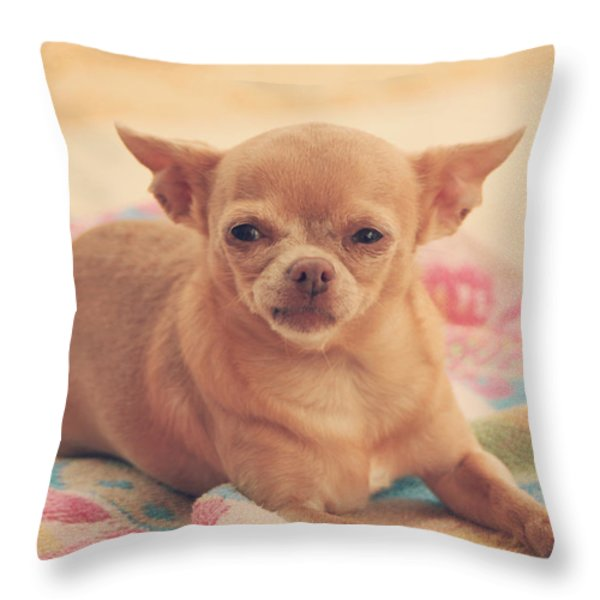Getting Sleepy Throw Pillow by Laurie Search