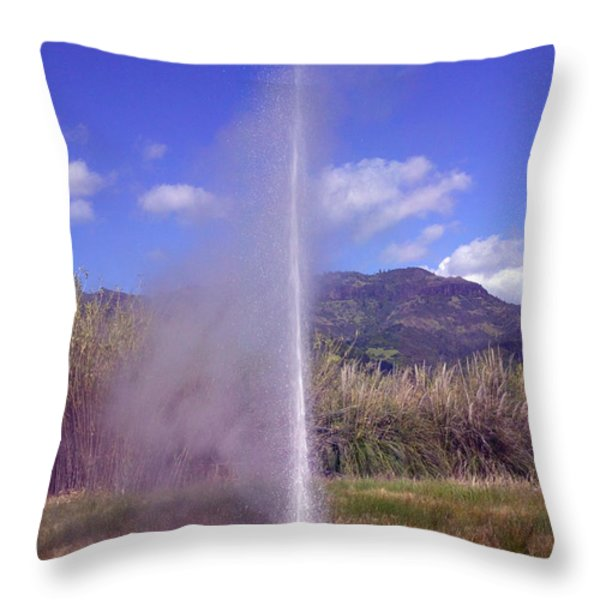 Geyser Calistoga Throw Pillow by Garry Gay