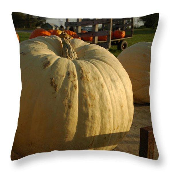 Ghost Pumpkin Throw Pillow by LeeAnn McLaneGoetz McLaneGoetzStudioLLCcom
