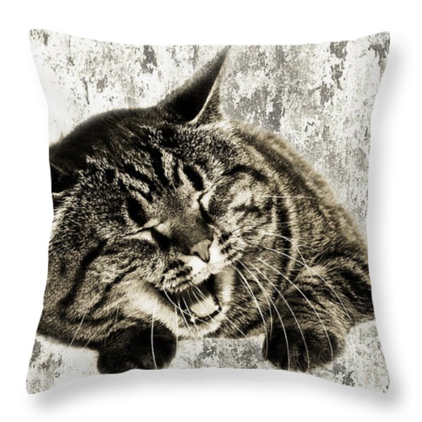 Giggle Kitty Throw Pillow by Andee Design