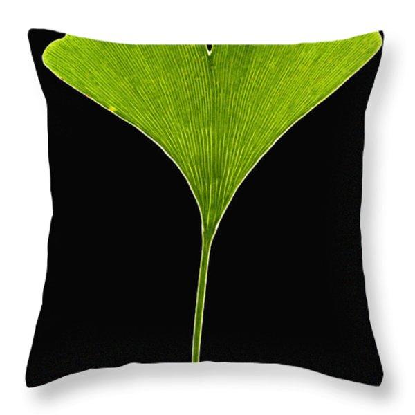 Ginkgo Leaf Throw Pillow by Piotr Naskrecki