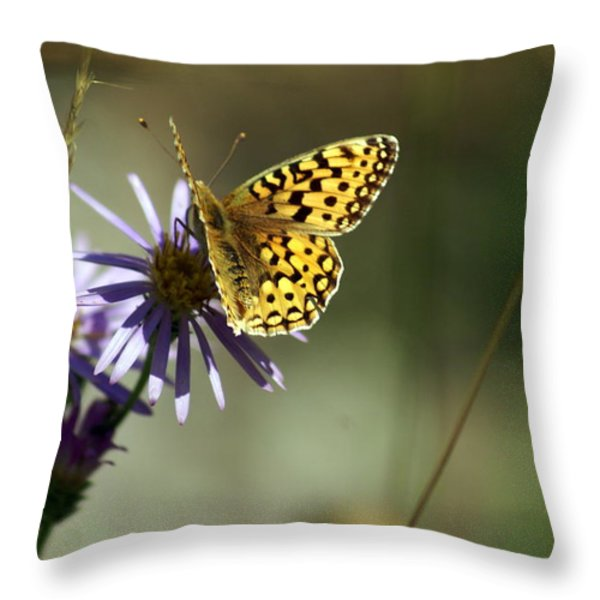 Glacier Butterfly Throw Pillow by Marty Koch