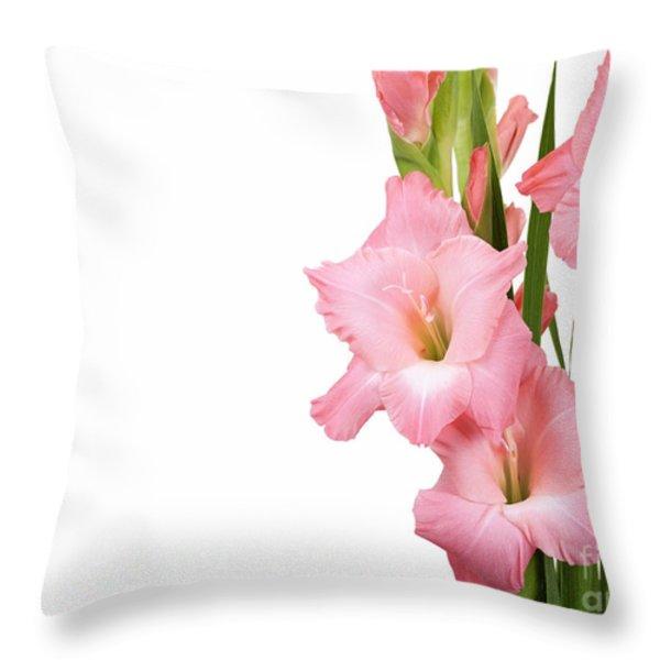 Gladioli On White Throw Pillow by Jane Rix