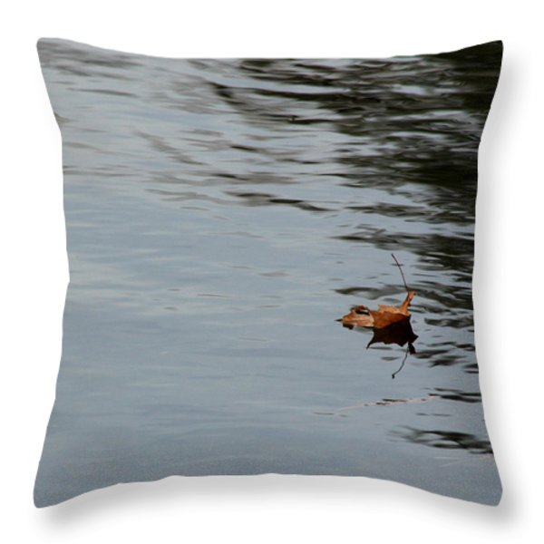 Gliding Across the Pond Throw Pillow by LeeAnn McLaneGoetz McLaneGoetzStudioLLCcom
