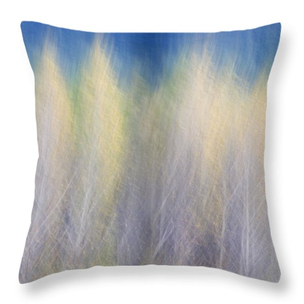 Glimpse Of Trees Throw Pillow by Carol Leigh