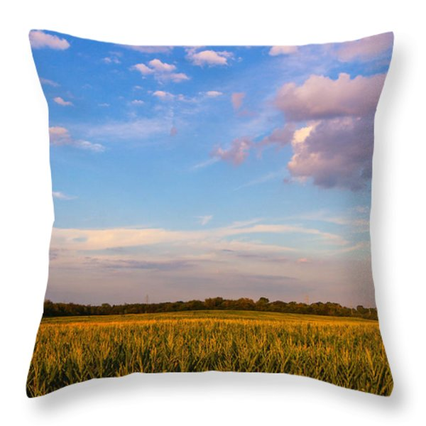 Glorious Life Throw Pillow by Rachel Cohen