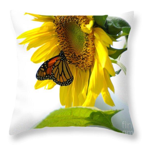 Glowing Monarch On Sunflower Throw Pillow by Edward Sobuta