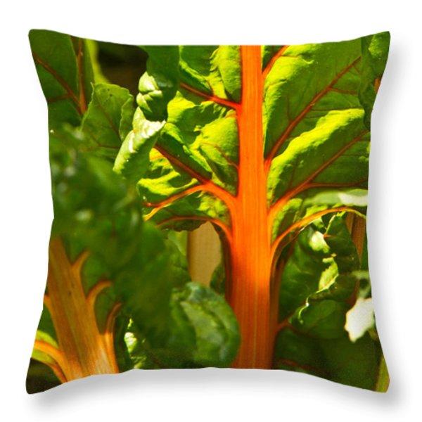 Glowing Swiss Chard Throw Pillow by Douglas Barnett