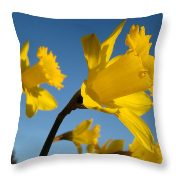 Glowing Yellow Daffodil Flowers art prints Spring Throw Pillow by Baslee Troutman