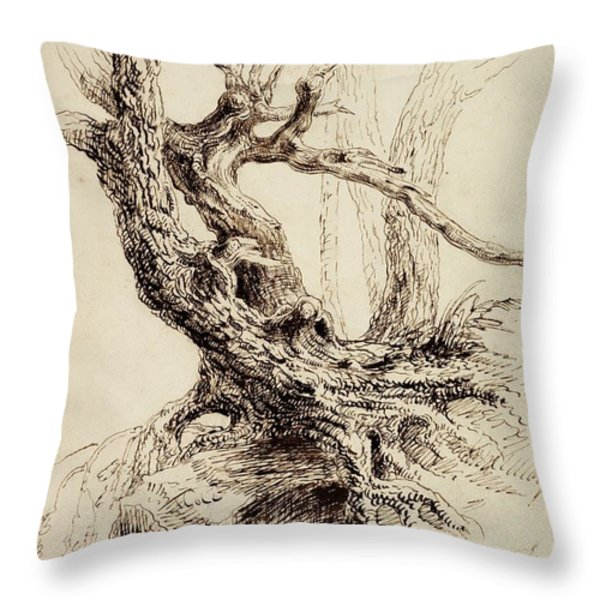 Gnarled Tree Trunk Throw Pillow by Thomas Cole
