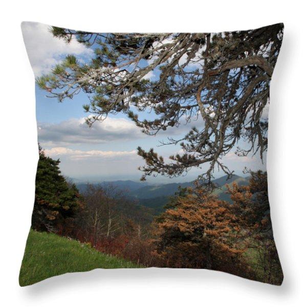 God's Good Earth Throw Pillow by Joseph G Holland