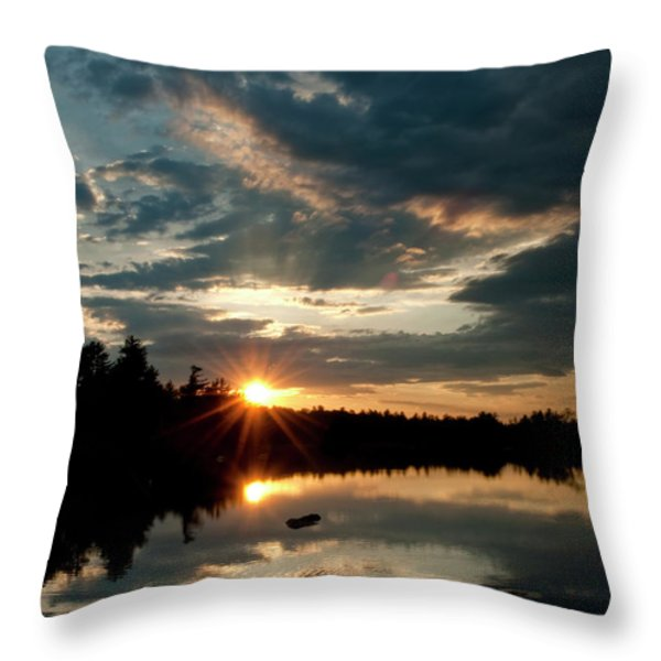 Going Going Throw Pillow by Greg Fortier