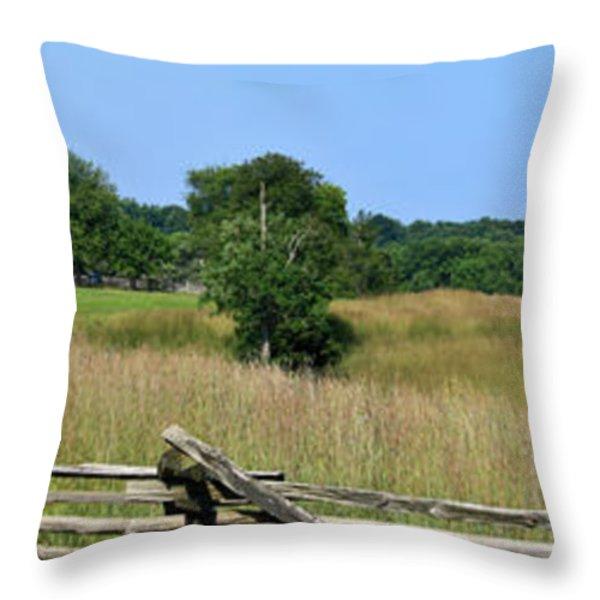 Going to Appomattox Court House Throw Pillow by Teresa Mucha
