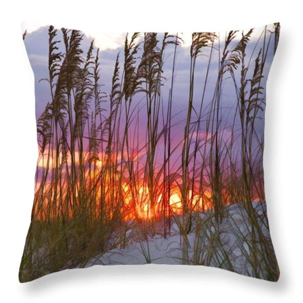 Golden Amber Throw Pillow by Janet Fikar
