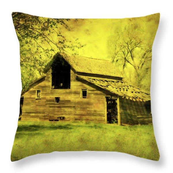 Golden Barn Throw Pillow by Julie Hamilton