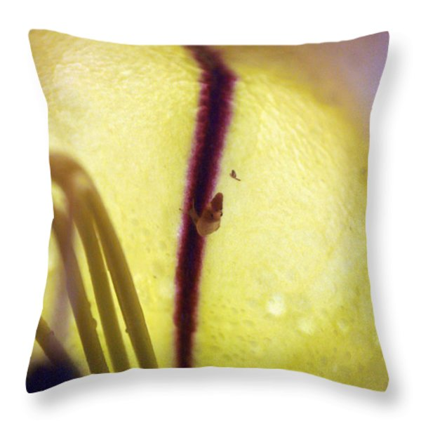 Golden Cup Flowe Study 2 Throw Pillow by Jennifer  Bright