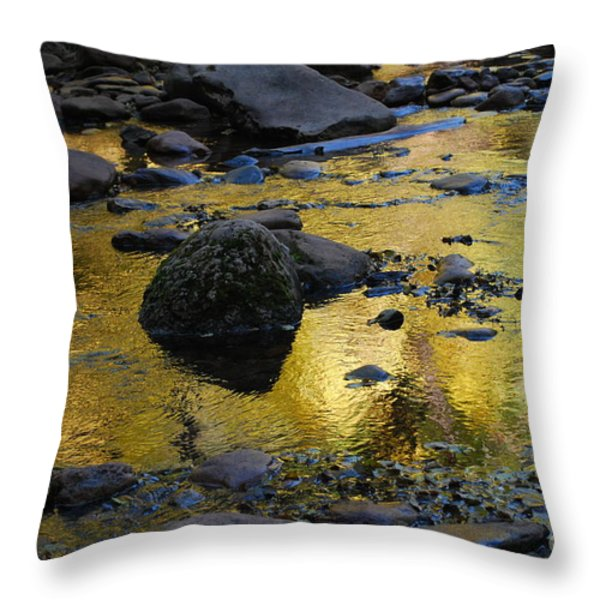 Golden Fall Reflection Throw Pillow by Heather Kirk