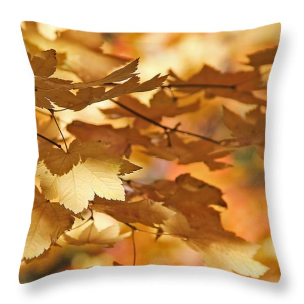 Golden Light Autumn Maple Leaves Throw Pillow by Jennie Marie Schell
