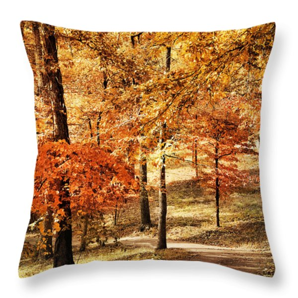 Golden Path Throw Pillow by Jai Johnson