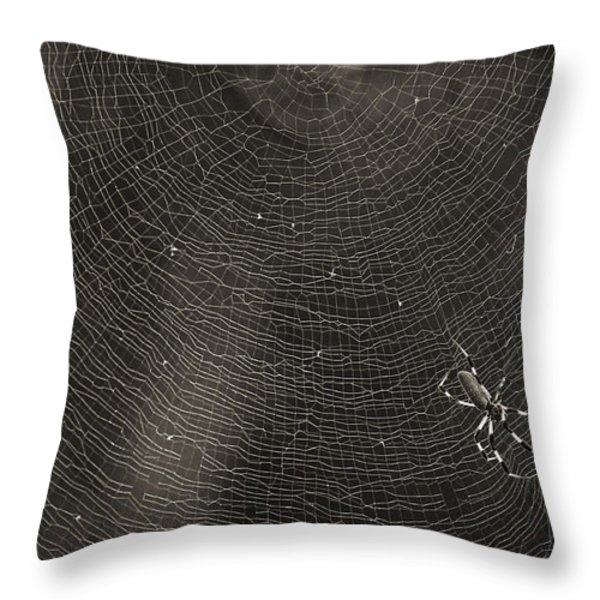 Golden Silk Spider Throw Pillow by Patrick M Lynch