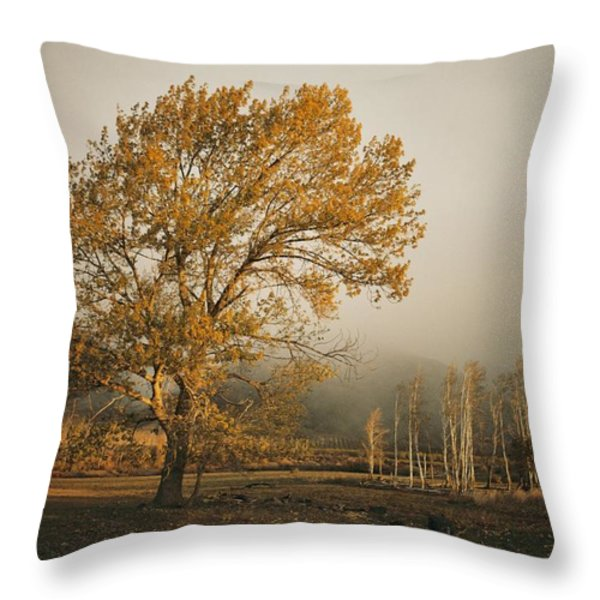 Golden Sunlit Tree With Mist, Yakima Throw Pillow by Sisse Brimberg