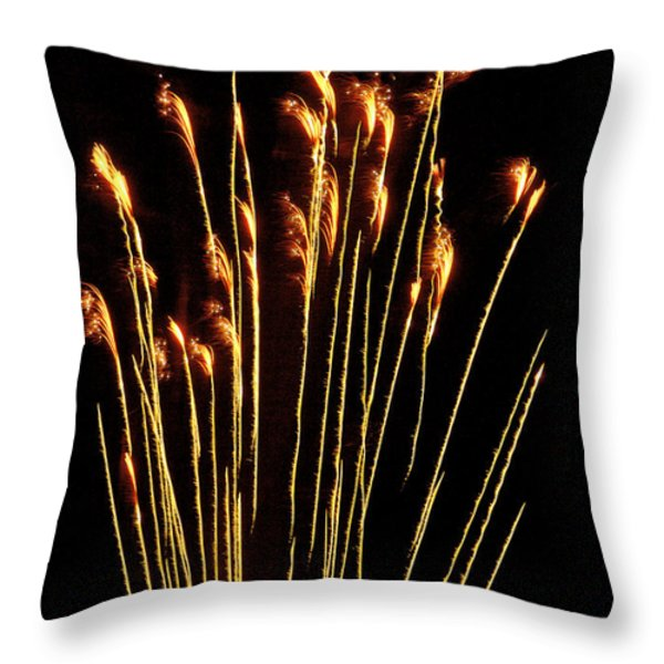 Goldenrod Throw Pillow by Phill  Doherty