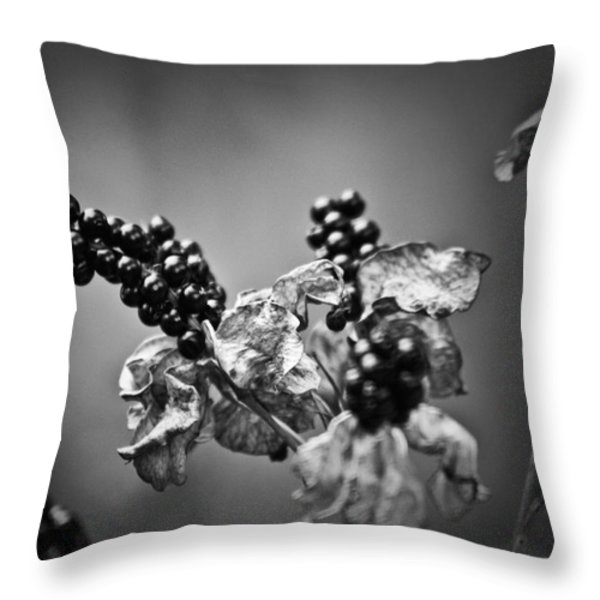 Gone To Seed Blackberry Lily Throw Pillow by Teresa Mucha