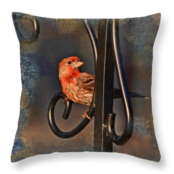 Good Moning Sunshine IIi Throw Pillow by Debbie Portwood