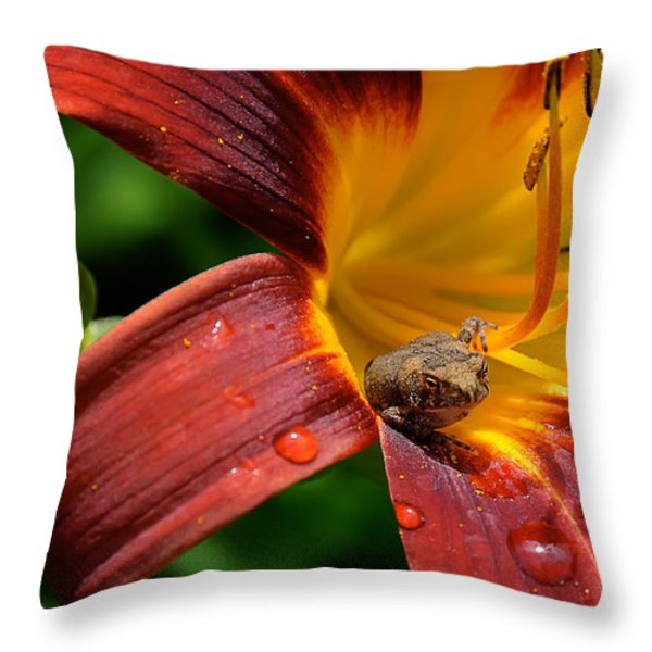 Good Morning Throw Pillow by Lois Bryan