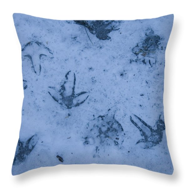 Goose Footprints In The Ice Throw Pillow by Joel Sartore