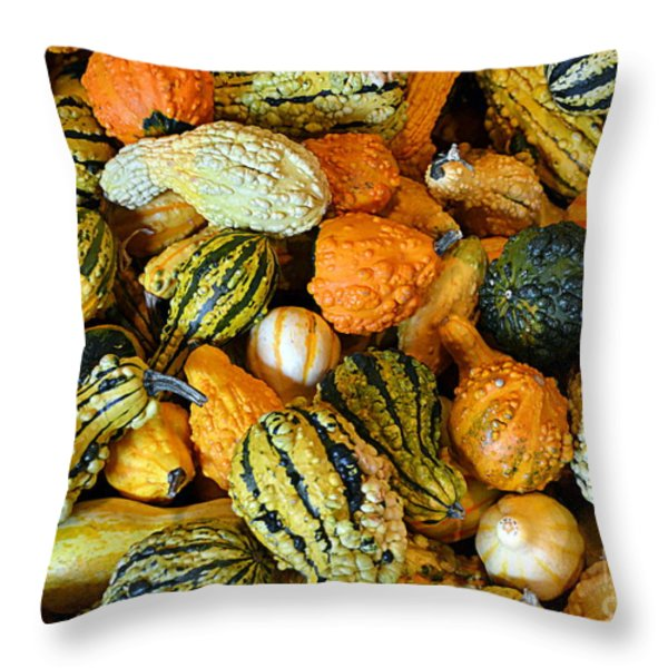 Gourdgeous Throw Pillow by Kevin Fortier
