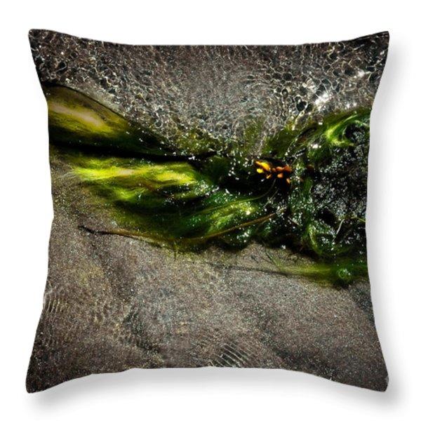 Graceful Throw Pillow by Venetta Archer