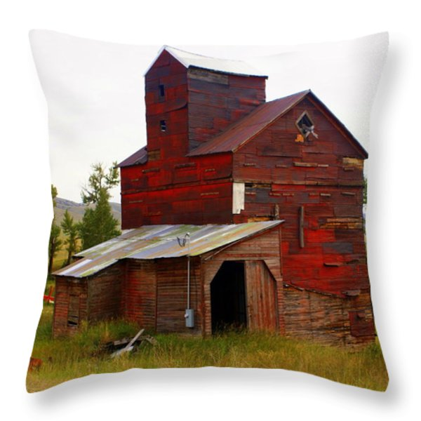 Grain Elevator Throw Pillow by Marty Koch
