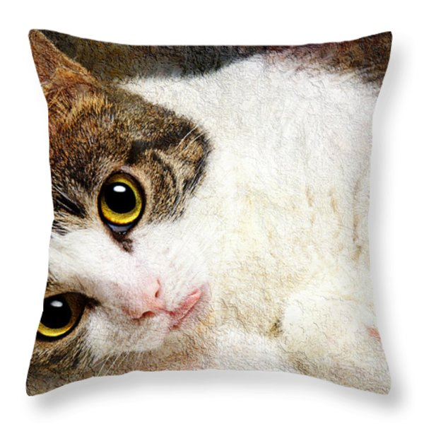 Grammy Said I Could Throw Pillow by Andee Design