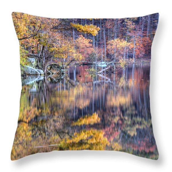Grand Reflections Throw Pillow by JC Findley