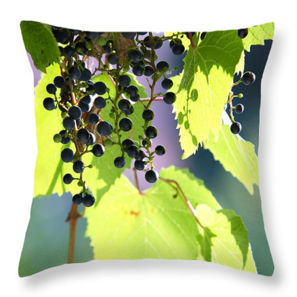 Grapes And Leaves Throw Pillow by Michal Boubin