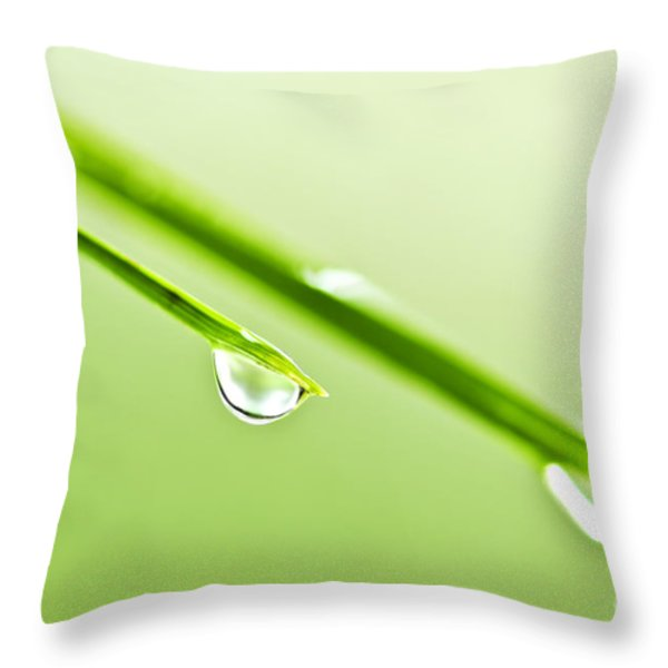 Grass Blades With Water Drops Throw Pillow by Elena Elisseeva
