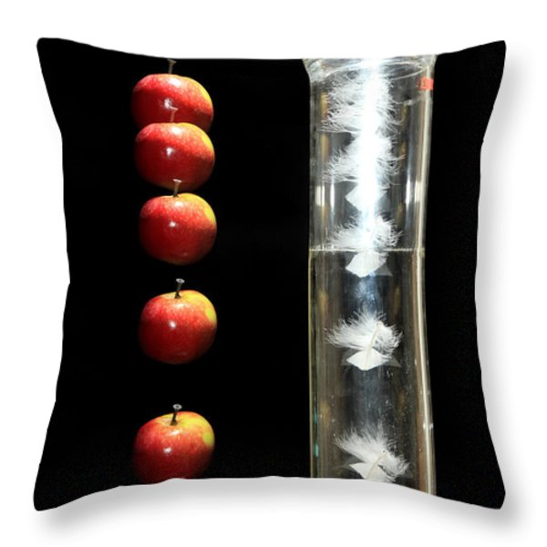 Gravity Comparison Throw Pillow by Ted Kinsman