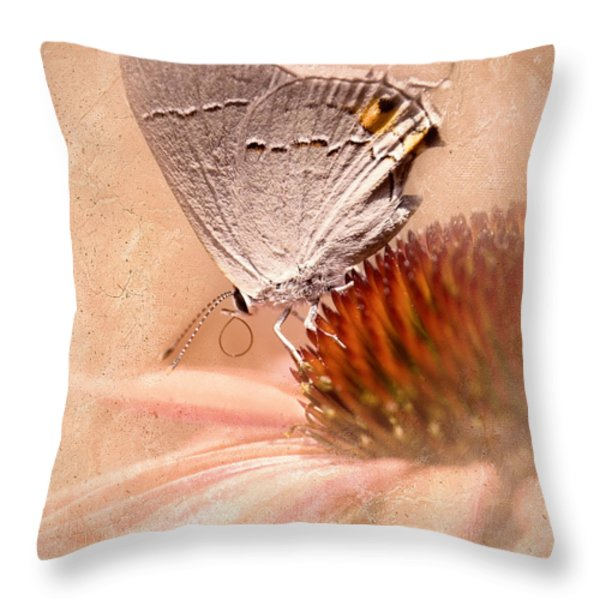 Gray Hairstreak Butterfly Throw Pillow by Betty LaRue