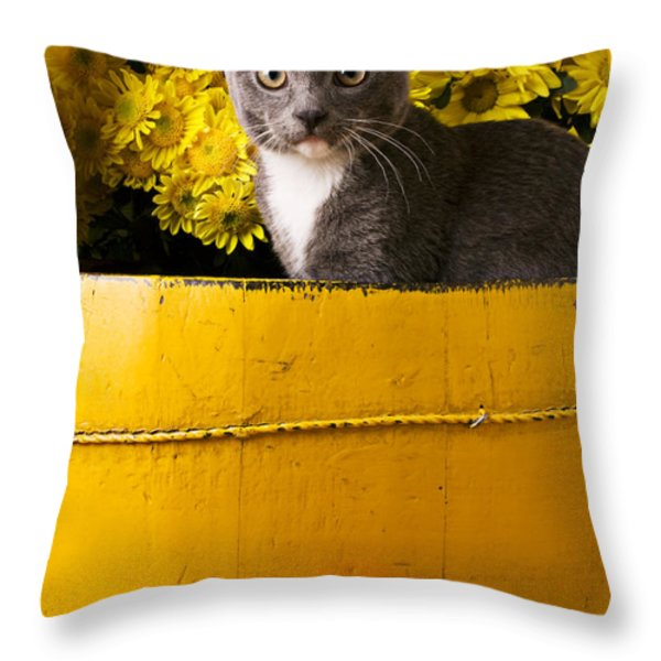 Gray kitten in yellow bucket Throw Pillow by Garry Gay