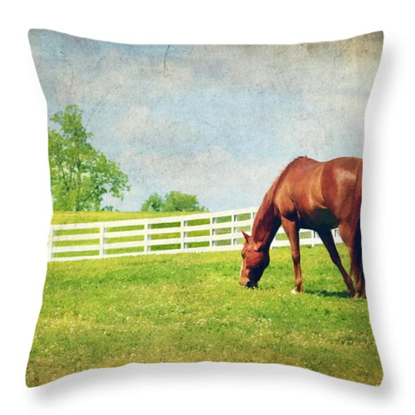 Grazing Throw Pillow by Darren Fisher