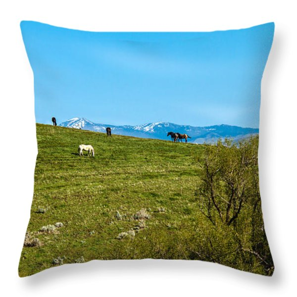 Grazing Horses Throw Pillow by Robert Bales