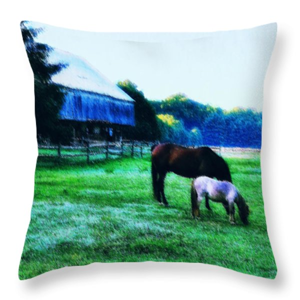 Grazing in the Meadow Throw Pillow by Bill Cannon