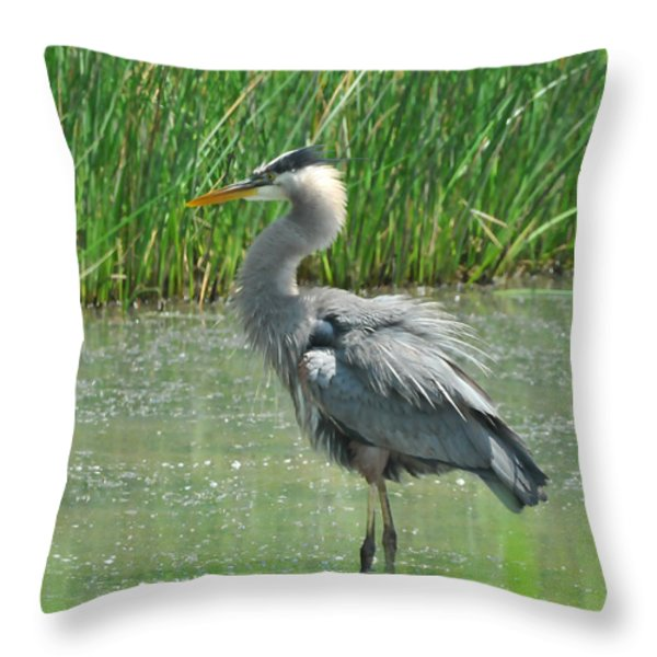 Great Blue Heron Throw Pillow by Paul Ward