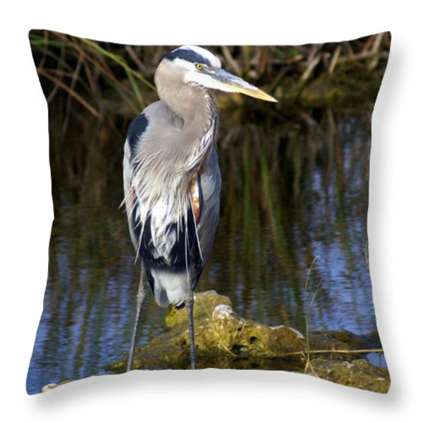 Great Blue Throw Pillow by Marty Koch