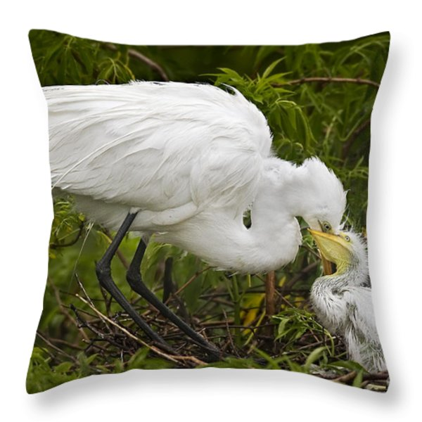Great Egret and Chick Throw Pillow by Susan Candelario