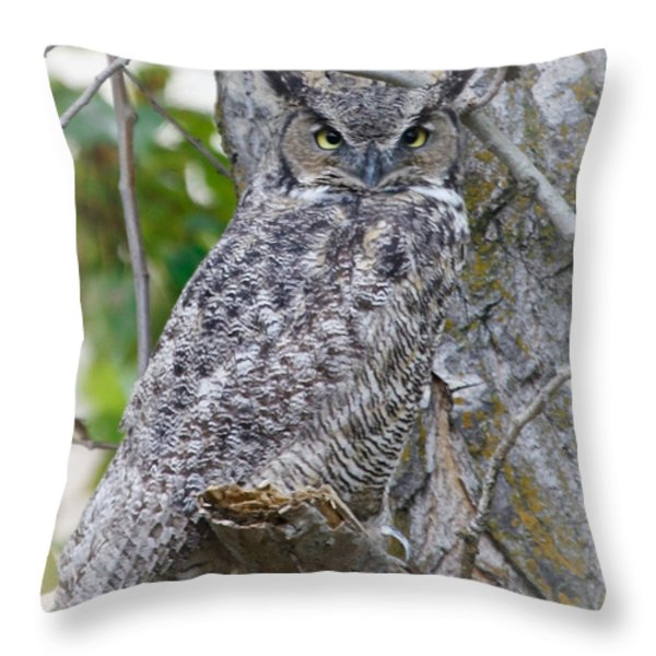 Great Horned Owl II Throw Pillow by Athena Mckinzie