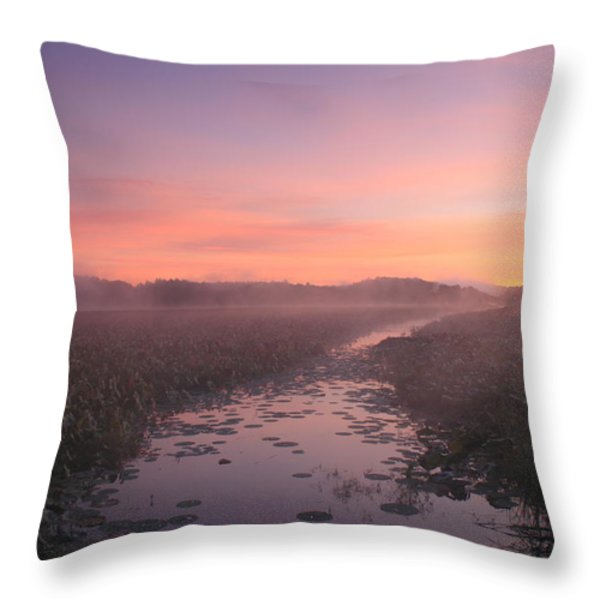 Great Meadows National Wildlife Refuge Dawn Throw Pillow by John Burk